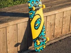 Choisir un skateboard débutant